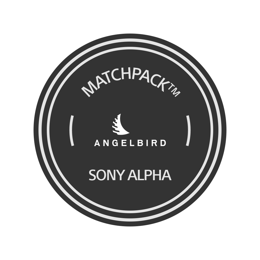 Angelbird Sony Alpha 7 | Alpha 9 | 64GB V90 | 2 stk