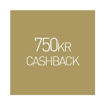 Sigma AF 105mm f/1.4 DG HSM Art Nikon (Cashback)
