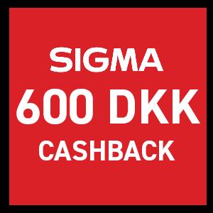 Sigma AF 35mm f/1.4 DG HSM Art Sony E